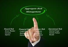 Aggregate Risk Management. Diagram of  Aggregate Risk Management Royalty Free Stock Image