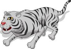 Aggressiv vit tigertecknad film Fotografering för Bildbyråer