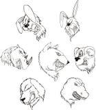 Aggressive animal heads Stock Photo