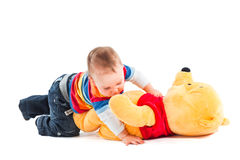 Aggressive baby. Two boys quarreling and retching bear toy on white background Royalty Free Stock Image
