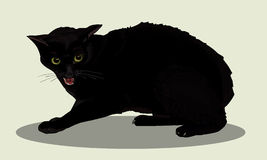 Aggressive black cat wit. Cat is angry. Cat hisses. Favorite pets. Realistic vector illustration. Royalty Free Stock Photos