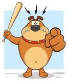 Aggressive Brown Bulldog Cartoon Mascot Character Holding A Bat And Pointing Stock Images