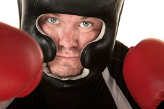 Aggressive Fighter Close Up Stock Photography