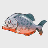 Aggressive fish, marine series vector stock illustration