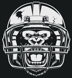 Aggressive gorilla. The fierce gorilla in the American football helmet Royalty Free Stock Photography