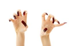 Aggressive hands with long nails. Hands with long acrylic nails over white stock photos