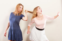 Aggressive mad women fighting each other. Stock Photography