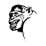 Aggressive monkey grin monkey (abstract) Stock Image