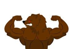 Aggressive strong Bear Bear athlete.  Stock Photo