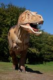 Aggressive T-Rex. Close-up on a blue sky royalty free stock photo