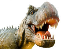 Aggressive T Rex on white background. Royalty Free Stock Photo