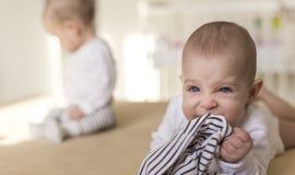 Aggressives Baby, das seine Hosen beißt Stockfotos