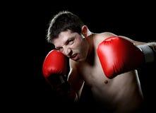 Aggressives Kämpfermann-Trainingsschattenboxen mit den roten kämpfenden Handschuhen, die schändlichen linken Hakendurchschlag wer Lizenzfreies Stockbild