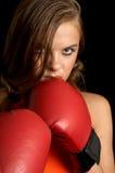 Aggressivo Fotografia Stock