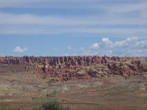 Aghi del deserto Immagine Stock