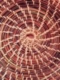 Aghi del pino di tessitura Fotografia Stock