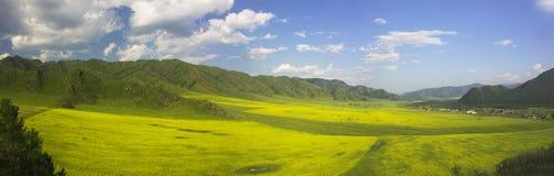 Agicultural Landschaft stockbild
