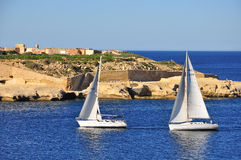 Żagiel łodzie, Malta Fotografia Stock