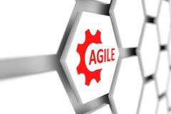 agile Photo stock