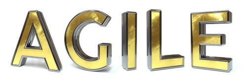 Agile golden text vector illustration