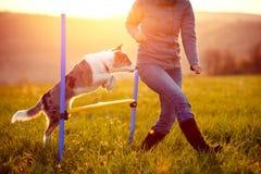 Agilidad en el fondo, la mujer y el perro del paisaje de la salida del sol saltando o imagenes de archivo