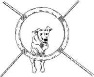 Agilidade do cão ilustração do vetor