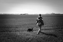 Agilité de chien sur la prairie Images stock