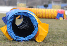 Agility equipment tunnel Royalty Free Stock Photography