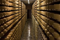 Aging cheese in a cellar of the Maison du Gruyere cheese factory in Switzerland. Gruyere is a famous swiss cheese generally known. Aging cheese in a cellar of Stock Image