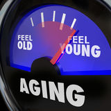 Aging Gauge Feel Old Vs Young Maintain Youth Engergy Vitality. Aging word on a gauge to illustrate difference between feeling old and young, with energy and Stock Images