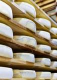 Aging Gruyere de Comte Cheese in maturing cellar at creamery Stock Photos