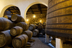 Aging Port wine in cellar royalty free stock image