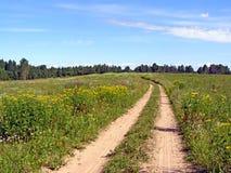 Aging rural road Stock Image