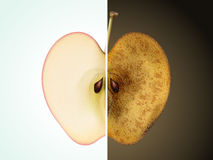 Aging or skin care concept. Comparison of apple 3D illustration - fresh and rotten apple for aging or skin care concept Royalty Free Stock Photo