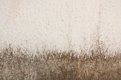 Aging stains on the surface of old plaster walls. Royalty Free Stock Photography