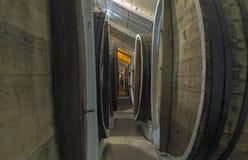 Aging of wines in oak barrels. Crimea. Stock Photography