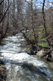 Agios Germanos river in early spring. Agios Germanos, the largest of the rivers in Greek Prespa ,empties into Great Prespa stock images