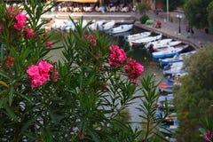 Agios Nicolás, Crete, Grecia fotos de archivo
