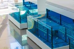 AGIOS NIKOLAOS GRECJA, LIPIEC, - 30, 2012: Akwaria dla cieki fundy Obraz Royalty Free