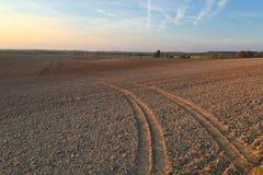 Agircutural field in late sunlight Stock Image