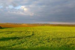 Agircutural krajobraz z chmurami Zdjęcie Royalty Free