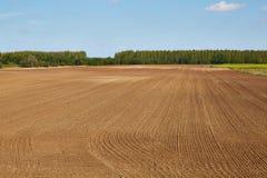 Agircutural pole z brąz ziemią Obrazy Stock