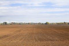 Agircutural pole z brąz ziemią Zdjęcia Royalty Free