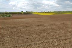 Agircutural pole z brąz ziemią Obraz Royalty Free