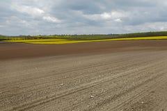 Agircutural pole z brąz ziemią Fotografia Stock