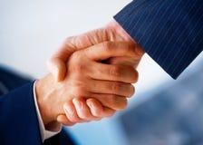 Agitação da mão. Imagens de Stock