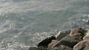 Agita incidente en la orilla rocosa metrajes