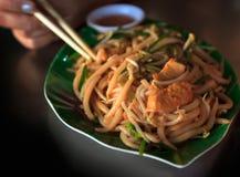 Agitación Fried Rice Noodles con el pollo Foto de archivo libre de regalías