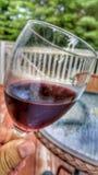 Agitation du vin pour la dégustation Photo libre de droits