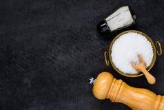 Agitatore, smerigliatrice e ciotola di sale sullo spazio della copia Fotografia Stock